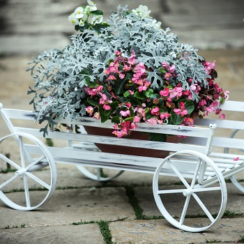 Stojany na kvety